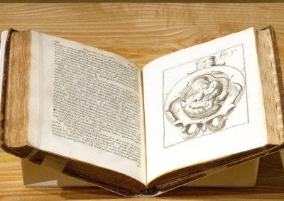 'Operationes chirurgicae novum lumen exhibentes obstetricantibus' by Hendrik van Deventer