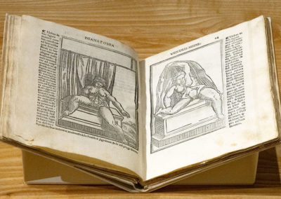 Isagoge breves prelucide ac uberime in anatomiam humani corporis by Jacopo Berengario da Carpi