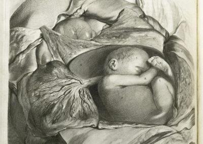 Anatomia hvmani corporis, centum & quinque tabvlis, per artificiosiss by Govard Bidloo