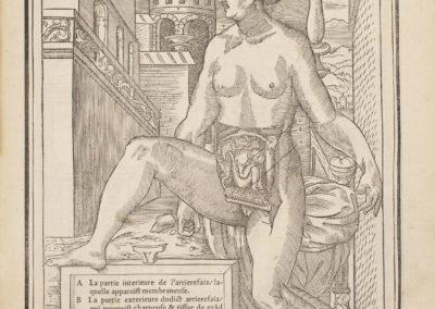 La dissection des parties du corps humain by Charles Estienne