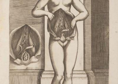 Tabulae anatomicae ex archetypis egregii pictoris by da Cortona Pietro